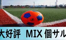 11/8(日)大好評MIX個サル 女性6名 男性10名